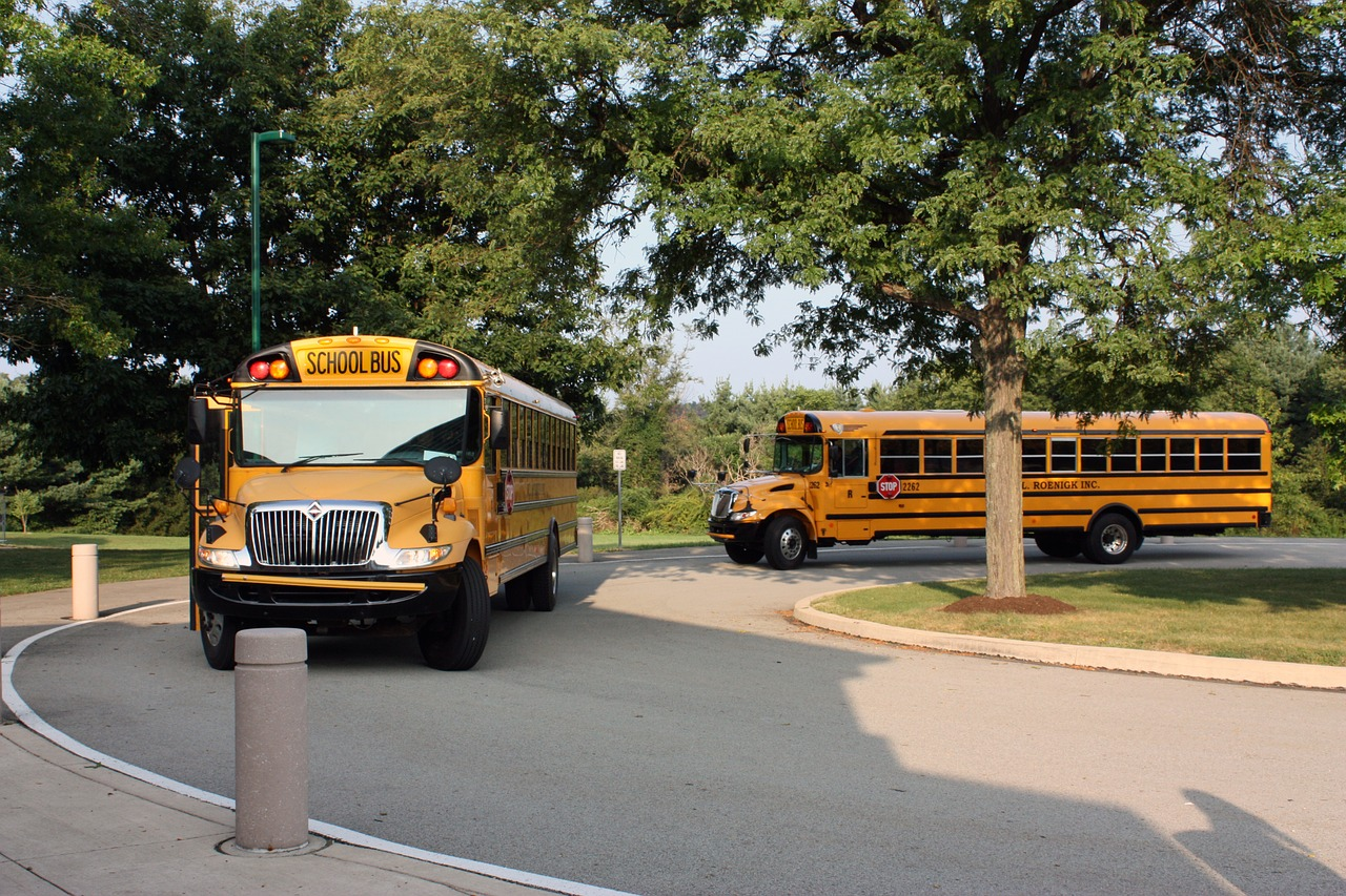 How Safe is the School Bus